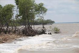 Việt Nam là một trong 10 quốc gia bị ảnh hưởng nhiều nhất bởi biến đổi khí hậu