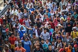 Vòng luẩn quẩn khủng hoảng di cư Trung Mỹ