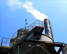 Nhà máy nhiên liệu sinh học Dung Quất khởi động phân xưởng điện hơi