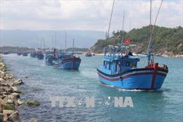Khắc phục 'thẻ vàng' IUU :  Ngăn chặn tàu cá có dấu hiệu vi phạm khai thác IUU