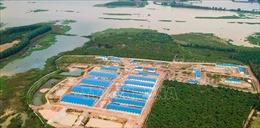 Buộc tháo dỡ trang trại nuôi lợn trái phép tại khu vực giáp ranh hồ thủy điện Trị An