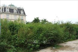 Buông lỏng quản lý dự án bất động sản - Bài 1: Biến đất tái định cư thành đất thương mại