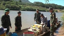 Biên phòng Quảng Trị mật phục, bắt liên tiếp 2 vụ vận chuyển gần 400 kg pháo lậu từ Lào