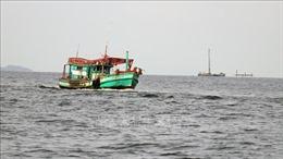 Huy động lực lượng, phương tiện hỗ trợ tàu cá gặp sự cố trên biển