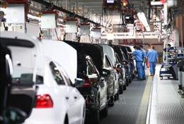 Lợi nhuận của Volkswagen cao hơn dự báo, bất chấp cáo buộc bê bối gian lận khí thải