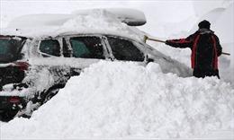 Bão tuyết tiếp tục hoành hành tại khu vực Trung và Nam Âu
