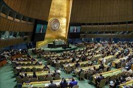 Việt Nam tăng cường đối tác toàn cầu vì một thế giới hòa bình và phát triển bền vững