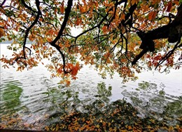 Mùa thu Hà Nội và những 'đặc sản'gây thương nhớ
