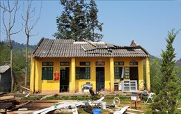 Dông lốc làm đổ sập, tốc mái 185 ngôi nhà ở Lào Cai