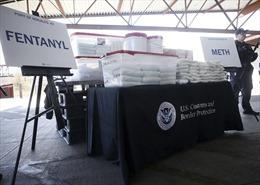 Thu giữ lượng lớn thuốc giảm đau fentanyl gây chết người