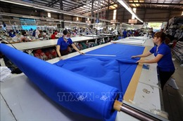 Chuyên gia Nhật Bản tin tưởng CPTPP sẽ thúc đẩy tăng trưởng của Việt Nam