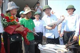 Ngư dân Quảng Trị trúng lộc biển đầu năm