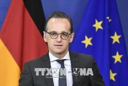 Đức: Tổ chức hồi hương các tay súng IS 'vô cùng khó khăn'