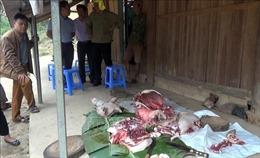 Mua thịt lợn có nguồn gốc xuất xứ, nấu chín kỹ trước khi dùng