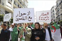 Biểu tình khắp Algiers, phản đối chính quyền của cựu Tổng thống Bouteflika