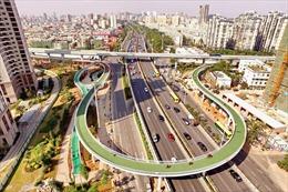 Bắc Kinh mở làn đường dành riêng cho xe đạp để giảm tắc đường