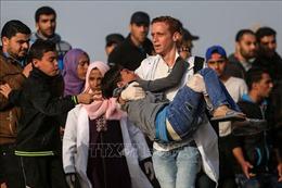 Palestine kêu gọi Hội đồng Bảo an LHQ nhóm họp về căng thẳng tại Gaza