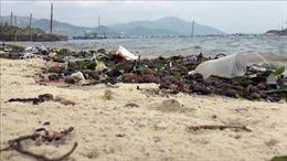 Thiết thực hưởng ứng Ngày Đại dương và Ngày Môi trường thế giới 2019