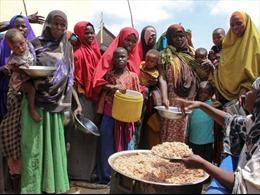 Cảnh báo hàng triệu người thiếu lương thực tại Somalia do hạn hán