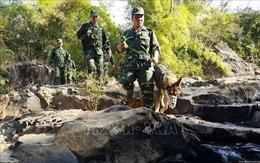 Phối hợp trong quản lý, giữ vững an ninh tại biên giới Việt Nam-Campuchia
