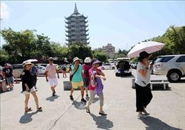 Nhiều hãng hàng không Thái Lan tăng chuyến để đáp ứng nhu cầu du lịch đến Việt Nam