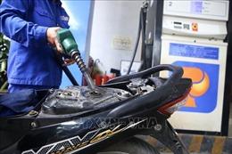 Tổng kiểm tra các cửa hàng xăng dầu: Tập trung vào nguồn gốc và điều kiện kinh doanh