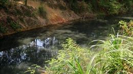 Nguyên nhân khiến kênh Tư Nghĩa ở Quảng Ngãi ô nhiễm nghiêm trọng