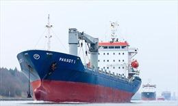 Trả tự do cho 10 thủy thủ Thổ Nhĩ Kỳ bị bắt cóc ở Nigeria