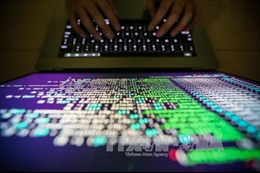 Tội phạm mạng Internet gây thiệt hại 45 tỷ USD trong năm 2018