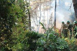 Nhiều khó khăn trong phòng, chống cháy rừng ở Hà Tĩnh