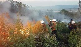 Tập trung khắc phục hậu quả mưa lũ và triển khai phòng, chống cháy rừng