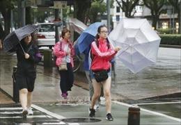 Bão Krosa gây thiệt hại nặng nề tại Nhật Bản