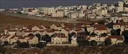 Hai nữ nghị sĩ Mỹ ủng hộ Palestine bị cấm nhập cảnh Israel