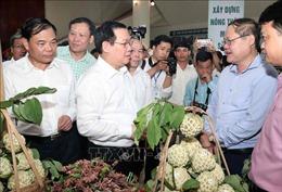 14 tỉnh vùng lõi nghèo của cả nước 'vượt khó' xây dựng nông thôn mới thành công