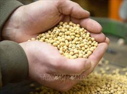 Tổng thống Mỹ đề nghị Nhật Bản mua nông sản