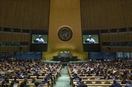 Hợp tác đa phương để giải quyết các vấn đề toàn cầu