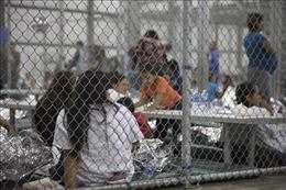 Mỹ lưu trữ mẫu ADN của tất cả những người di cư bị bắt