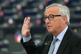 Chủ tịch EC: Anh sẽ phải chịu trách nhiệm nếu Brexit không có thỏa thuận