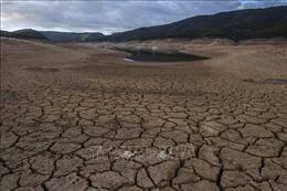 Giải pháp bền vững cho nguồn tài nguyên đang bị đe dọa