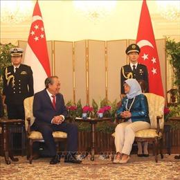 Việt Nam coi trọng phát triển quan hệ hợp tác tin cậy và thực chất với Singapore