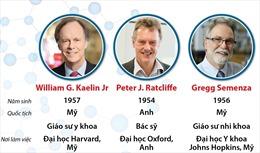 Giải Nobel Y học 2019 vinh danh công trình nghiên cứu tế bào