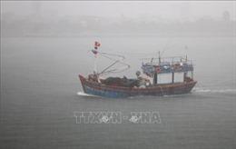 Bị sóng đánh vào kè chắn sóng, một tàu cá Bình Định nát vụn