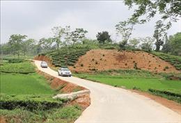 Thực hiện tiêu chí môi trường trong xây dựng nông thôn mới: Bài cuối - Những mô hình tiêu biểu