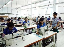 Nhiều điển hình tiên tiến tô đậm nét đẹp nông thôn Ninh Thuận