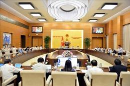 Ban hành các Nghị quyết về nhân sự, điều chỉnh kế hoạch đầu tư trung hạn