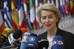 'Một châu Âu xanh'để hồi sinh sức mạnh