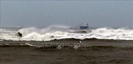TP Hồ Chí Minh tập trung triển khai các phương án ứng phó với bão số 6