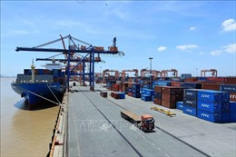 Vinalines: Năng lực cảng biển của Việt Nam đang đáp ứng đủ nhu cầu