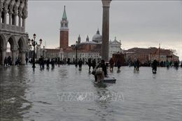 Venice trở lại cuộc sống thường nhật sau trận lụt lịch sử