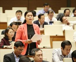 Nhiều ý kiến khác nhau về quy định Kiểm toán Nhà nước tham gia giám định tư pháp